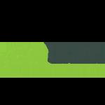 the-code-chameleon-logo